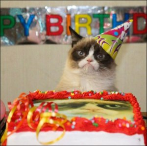 Cat-sad-birthday